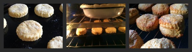 Easy cheese scone